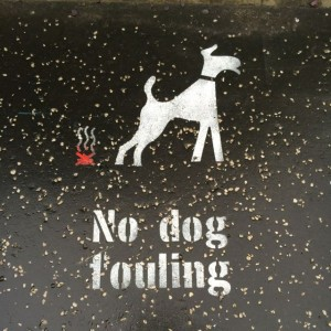 Saw one with a little human figure picking up the steaming poop behind the dog once.